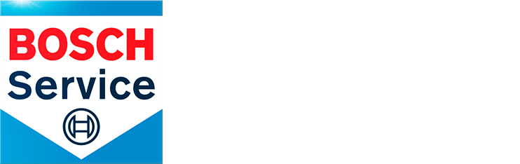 fesacar.com